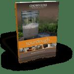 Sourdough Journal #6: Caribbean Sourdough Pizza