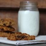 Sourdough Journel #12: Delicious Sourdough Cookies