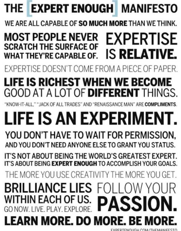 expert manifesto