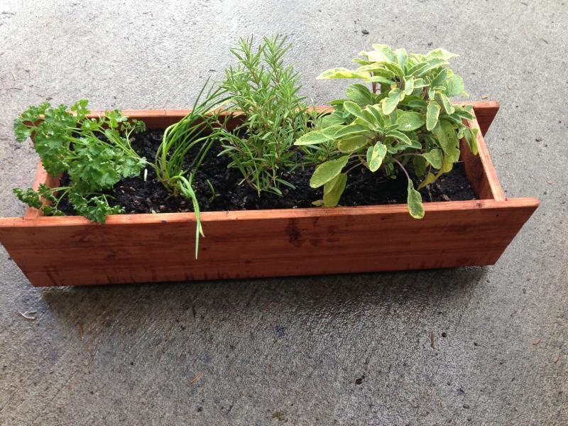 Window Sill Herb Garden Pots Garden Design Ideas