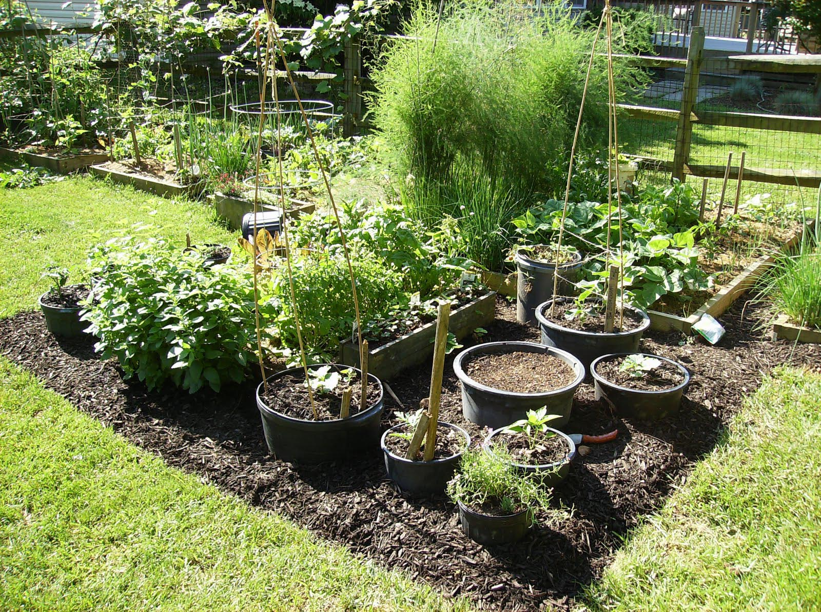Container Gardening Tips Vegetables Garden Design Ideas