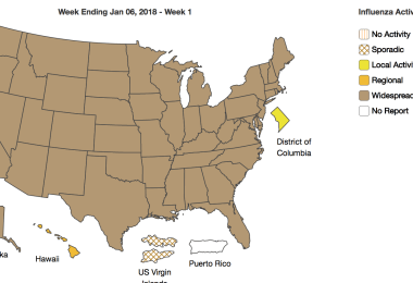 CDC Influenza Summary Update