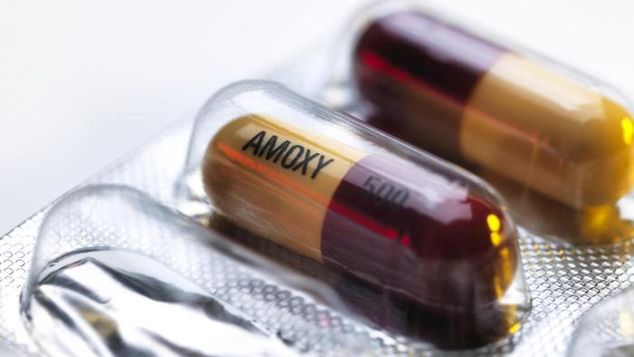 Amoxicillin Dose for Chlamydia Cure - Ask Doctor on JustDoc