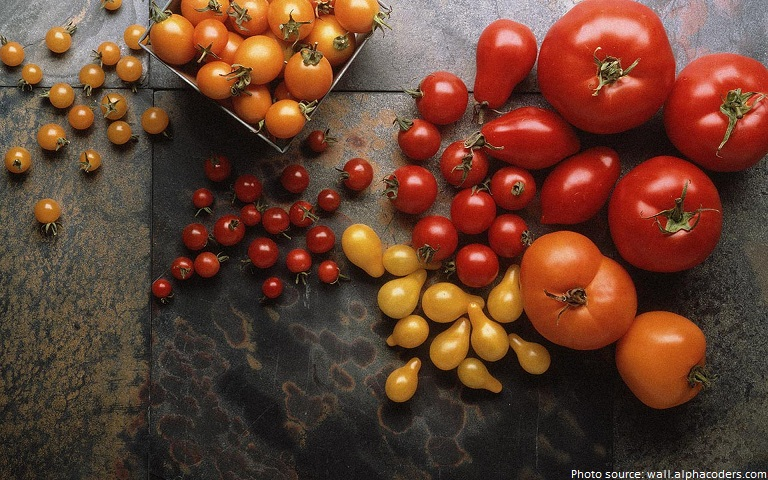 Interesting Facts About Tomatoes | Just Fun Facts