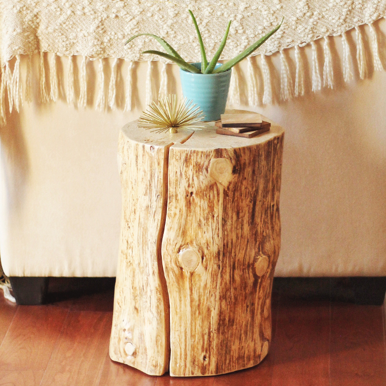 Diy natural tree stump side table justine celina for Diy tree stump projects