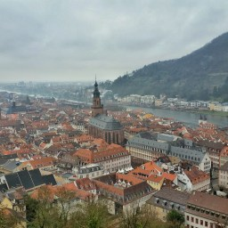 Stressing Out in Heidelberg