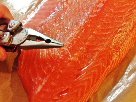 removing pin bones from salmon