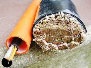 seacom ciena fiber submarine network repair and expansion