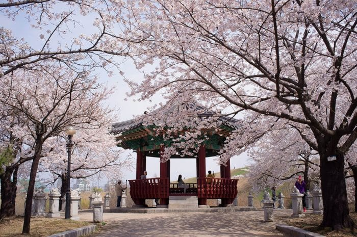 20 raisons de voyager en Corée du Sud