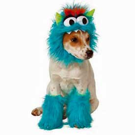 Shop Cat and Dog Costumes for Halloween