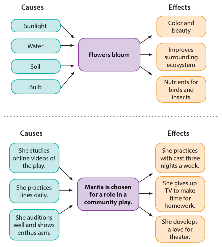 Warm-Up for Cause-Effect Essays Thoughtful Learning K-12