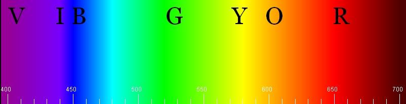 Lab Spectrophotometry Basics