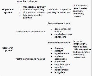 Causes of Drug Addiction \u2013 Neurotransmitter imbalance Kahuna