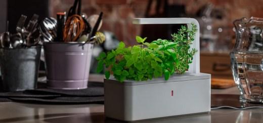 Smart Herb Garden