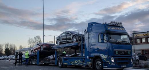 Kadastiku ning teisegi eestlase Model S Tesla tehases Tilburgis