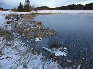 Frossen sø på Mols