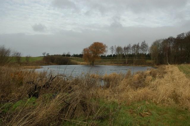 Sø ved Knebel