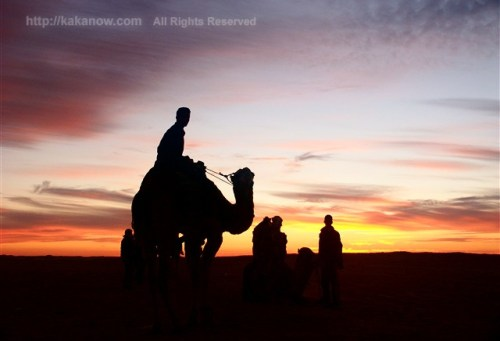 Sunset in Sahara desert, Tunisia, North Africa