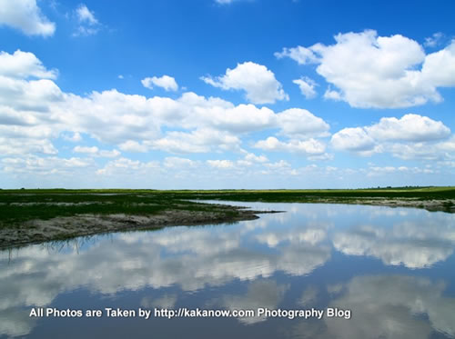 China travel, Inner Mongolia, Horqin Prairie, wetland. Photo by KaKa.