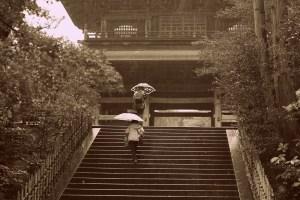 mim24 秋雨円覚寺