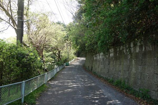 17木漏れ日の道