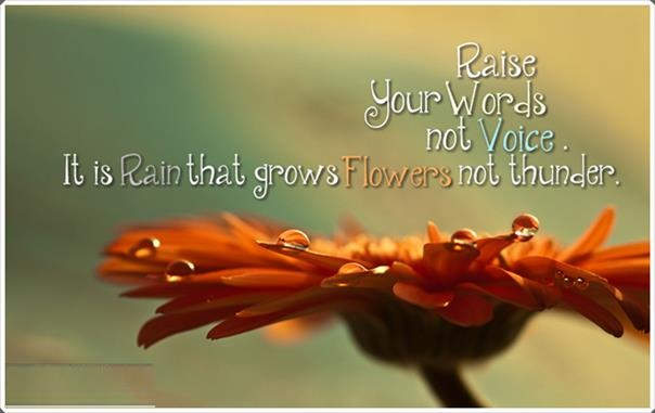 Sabr Quotes Wallpaper Sayings Of Rumi 3 Kamala S Poetry Blog