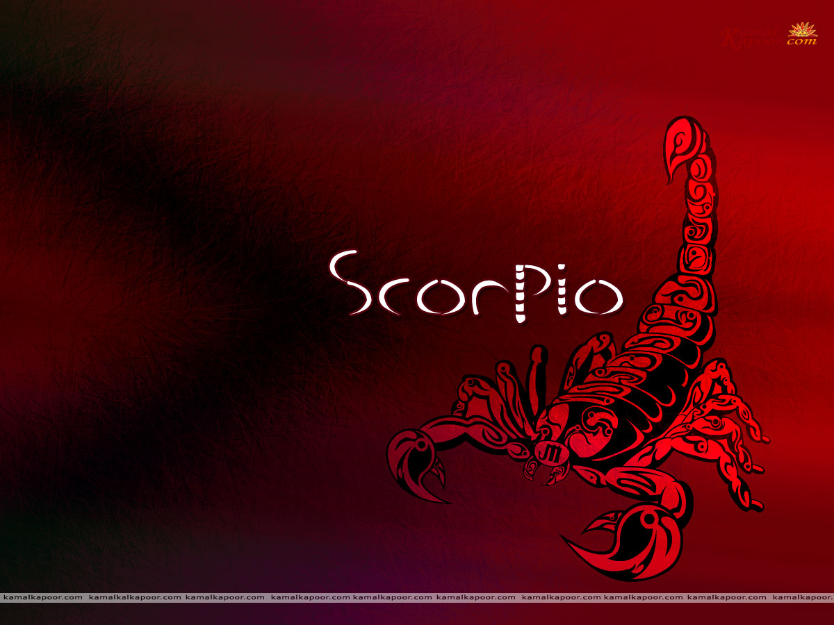 Red Libra Scorpio 2014 Predictions For The Zodiac Star Sign Scorpio