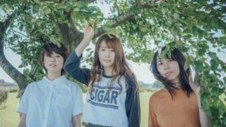 カネヨリマサルのバンド紹介
