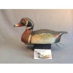 Small Crop Of The Wooden Duck