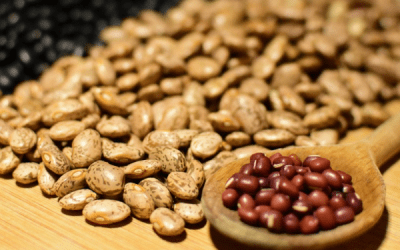 Why don't we eat enough beans?