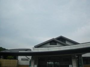 IMGP4668