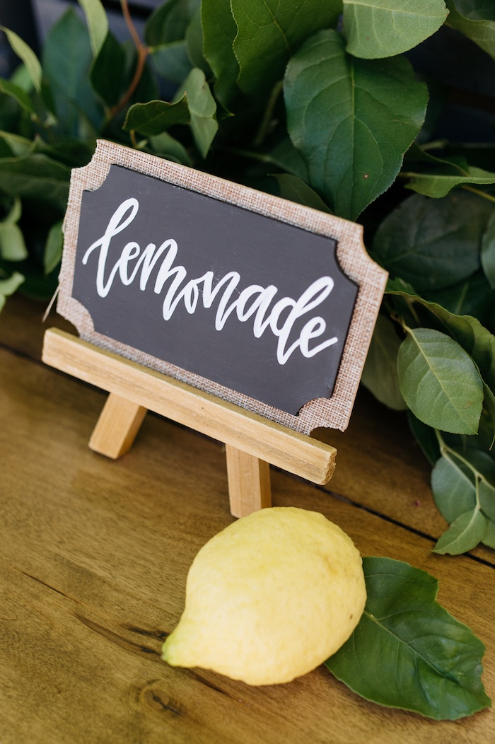 Elite Decor Kara's Party Ideas Rustic Lemon Themed Baby Shower | Kara