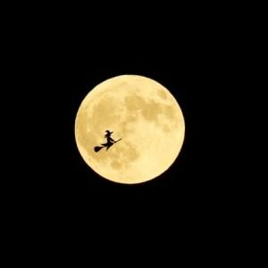 """""""月""""を大切にしないといけない本当の理由"""