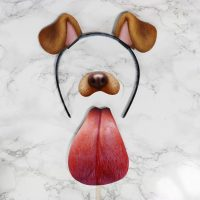 DIY Last-Minute Snapchat Dog Costume!  Halloween 2016 ...