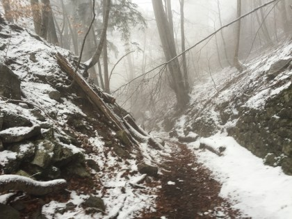 trail, snow line, europe, winter hiking