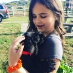 ender and falkor miniature schnauzer puppies