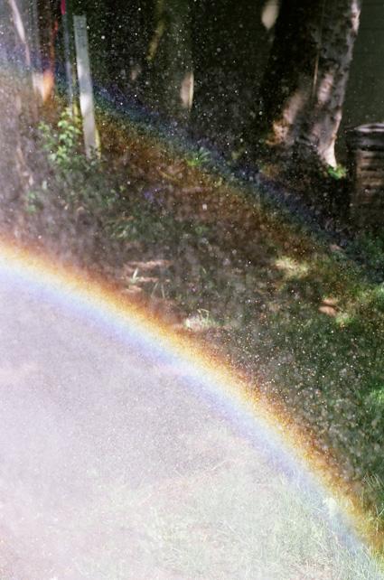 Karin-Mueller-regenbogen-im-garten