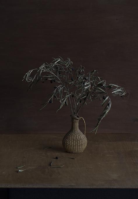 karin-mueller-olivenstrauss