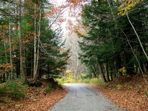 photo of road at Kripalu