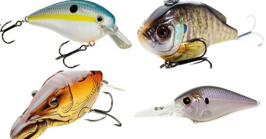 Crankbait Color Selection The Guide To Choosing Crank Colors
