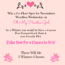 Win a Co-host position for Wordless Wednesday on Oh My Heartsie Girl