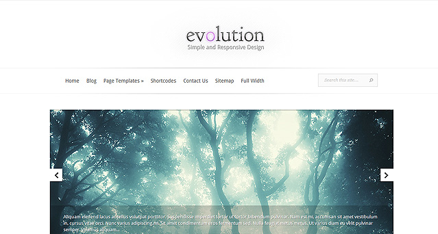 Download Evolution Responsive WordPress Theme Free