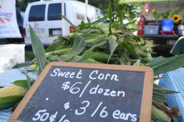 Sweet corn for sale