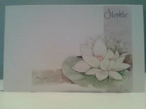3d Wallpapers For Spring Kaartjes Innige Deelneming Kreosa