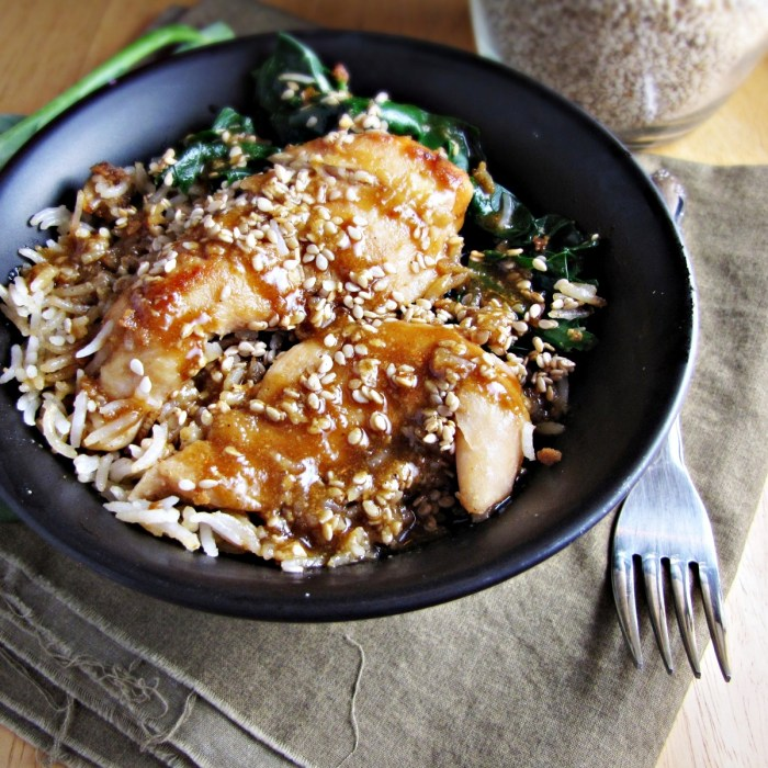 Winter Cleanse 2014: Healthy Dinner Recipes - Sesame Chicken Bowl {Katie at the Kitchen Door}