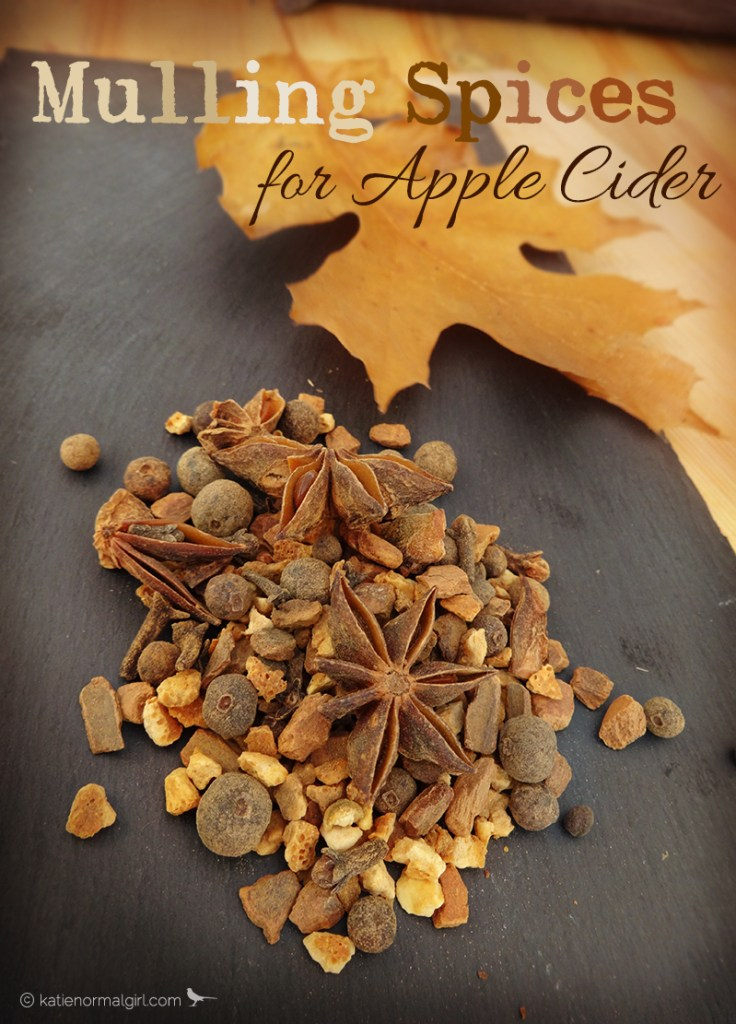 Mulling Spices for Apple Cider from katienormalgirl.com #thanksgiving #fall #autumn #partyplanning #beverages