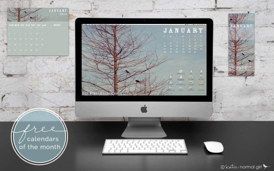 Freebie January calendars from katienormalgirl.com - includes a printable display, printable write-on printable, and digital wallpaper calendars #free #downloads