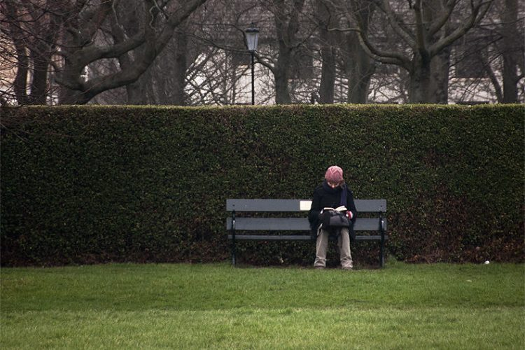 woman on a bench and reading