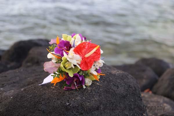 kauai wedding kauai weddings. Black Bedroom Furniture Sets. Home Design Ideas