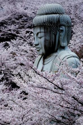 japan_149